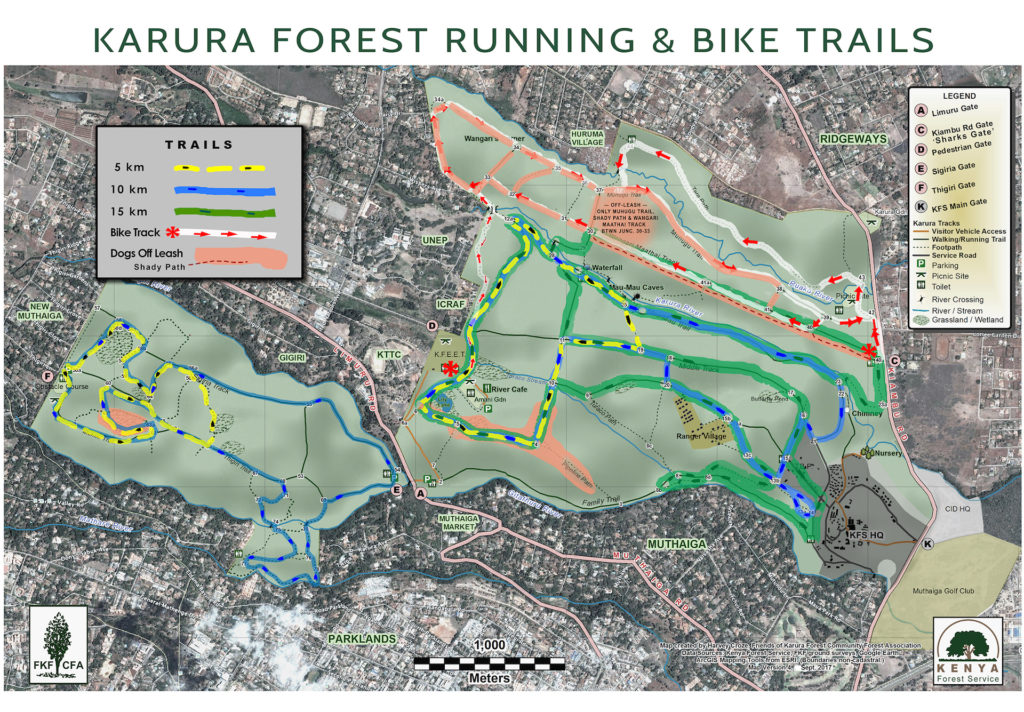 Karura Forest Running & Biking Trails